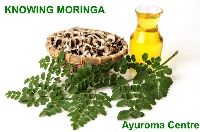 Knowing Moringa